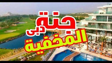 Photo of بالفيديو كل ما يجب عليك معرفته عن جنة دبي المخفية في دبي
