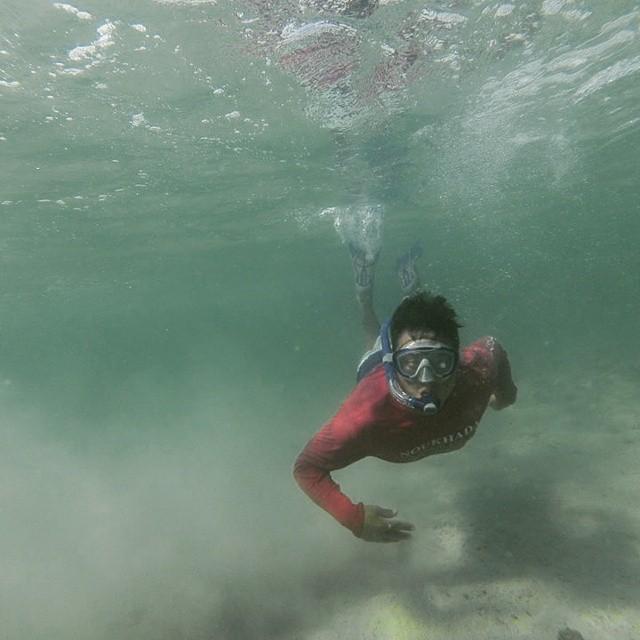 الغطس Underwater snorkelling safari