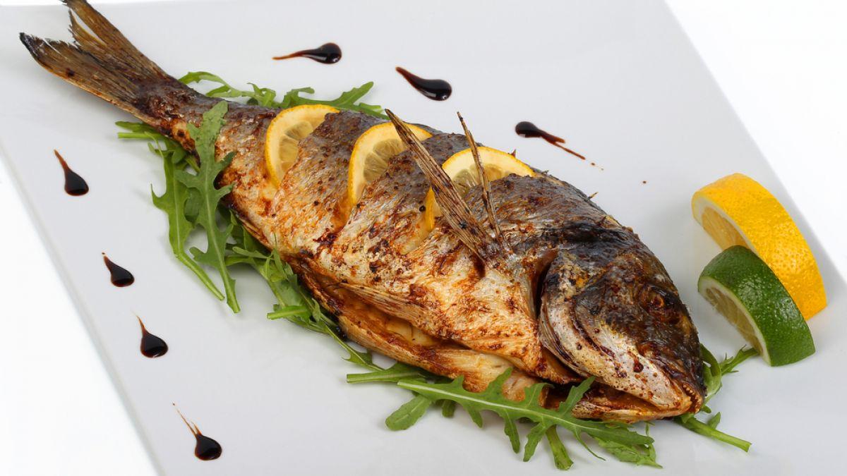 الأسماك الزيتية