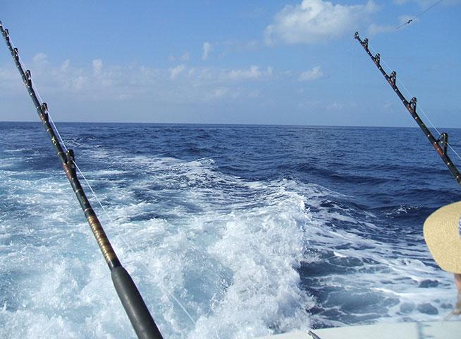 رياضة الصيد Deep-sea fishing