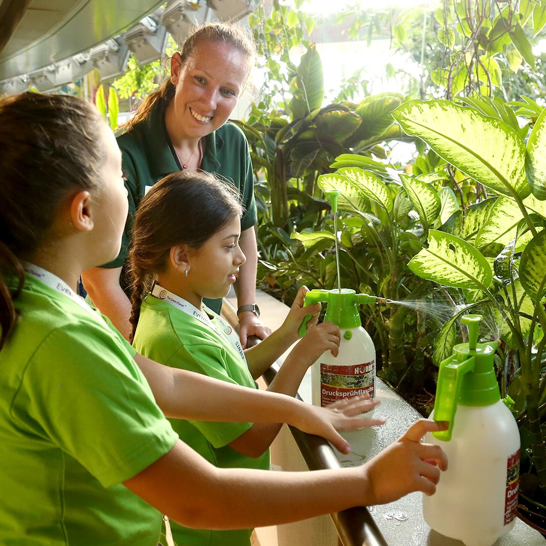 المخيم الطلابي الصديق للبيئة