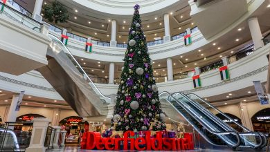 Deerfields Mall – Christmas Tree