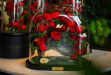Forever Rose تطلق تشكيلة وروودها وهداياها لعيد الحب 2021