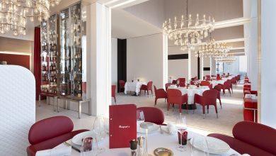 انطلاق آخر نشاطات سلسلة طاولة الشيف 2021 في أبوظبي