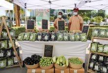 سوق المزارعين للمنتجات العضوية 2021