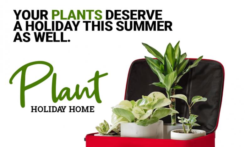 خدمة منزل عطلة النباتات